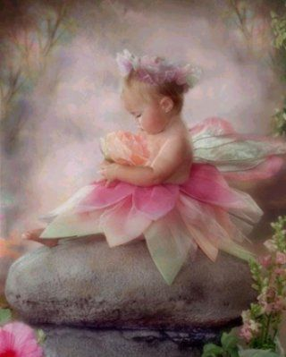 Baby fairy ... too cute!                                                                                                                                                                                 More