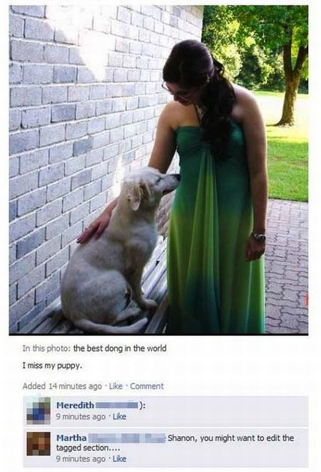 Funny Spelling Fails on Facebook (40 pics