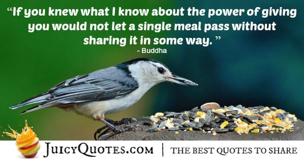 Buddha Quote - 120