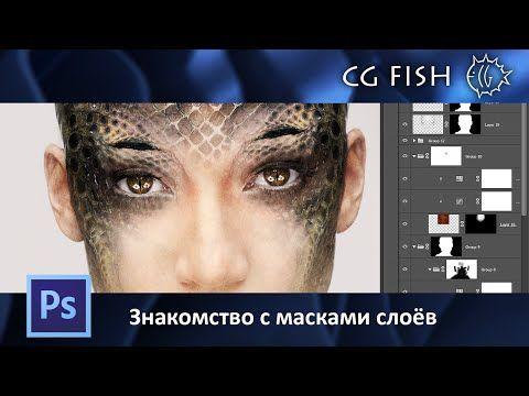 75 видео-уроков по основам Photoshop для начинающих