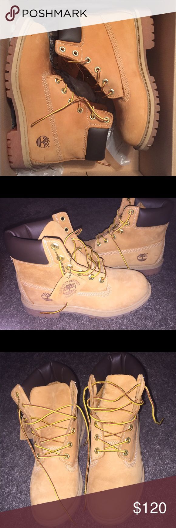Bought them but never wore them. Brand new Timberland Boots never wore them before, size 5.5 in Junior's. Timberland Shoes Combat & Moto Boots