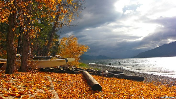 "BBC News - Your Pictures: Canada  ""Felicia Douglas: 'View of Okanagan Lake in the fall from Winfield.'""  The juxtaposition of the stunning colors leaves me breathless!"