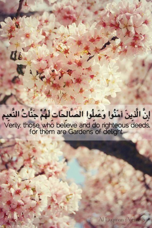 lionofallah:    O Allah, Enter us into Your Gardens.    www.LionOfAllah.com