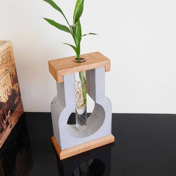 Test tube vase for small flowers made of gray cement olive wood, contemporary vase for live plants, glass tube vases present for anniversary