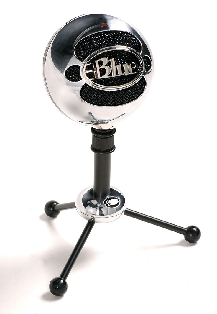 Blue Snowball Mic: I really like this sliver one