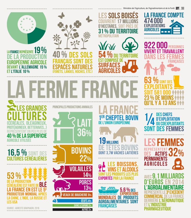 Infographie - La ferme en France