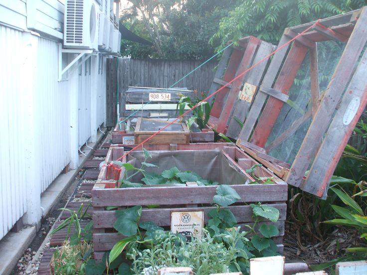 Our bird proof vegetable garden made from reused pallets !  Idea sent by Jason Sydenham ! #Garden, #PalletPlanter, #RecycledPallet
