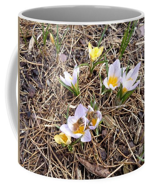 Bees Coffee Mug featuring the photograph Bees Crocus by Lyssjart Sj