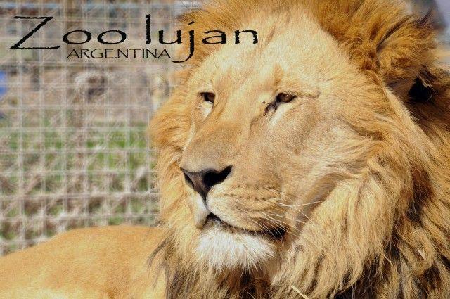 Zoo de Lujan - Argentina