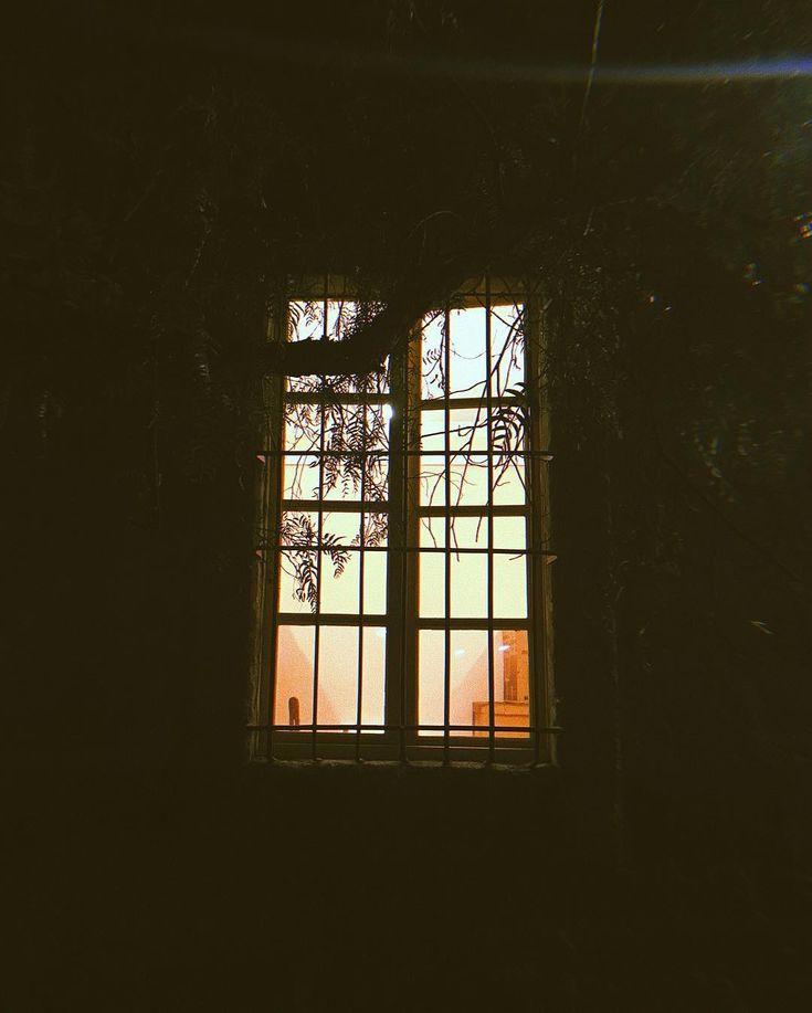 Es una vieja costumbre la mía tener un concepto de algo. Para mí la ventana es una puente entre mí y el mundo circundante. Una ventana deja pasar la luz la mirada el olor el calor el frío y el ruido. Los vidrios son como la limitación de los ángulos y de un campo visual pero al mismo tiempo también de la agudeza de los sentidos y los conocimientos.