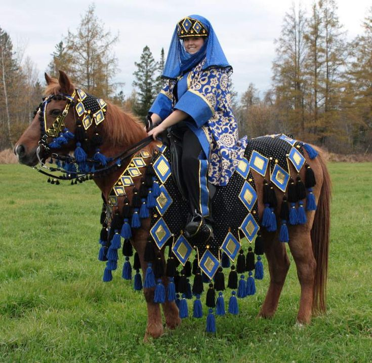 126 best Equus - Arabian Native Costume images on ...