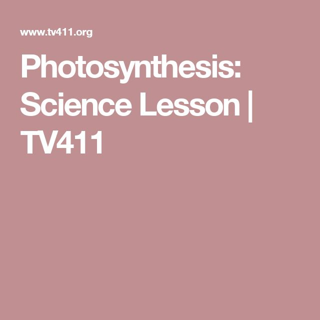 80 best cellular respiration and photosynthesis images on pinterest photosynthesis science lesson tv411 fandeluxe Gallery