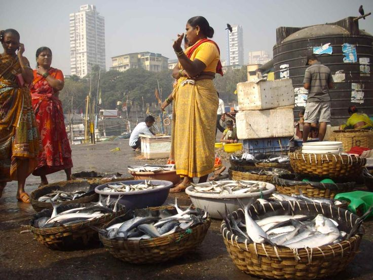 Walk through the Sassoon Dock and explore the fish markets | Padhaaro