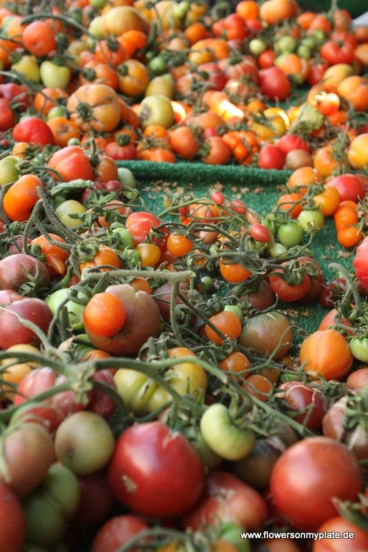 Let's check out the tomatoes at Santa Monica Farmer's Market