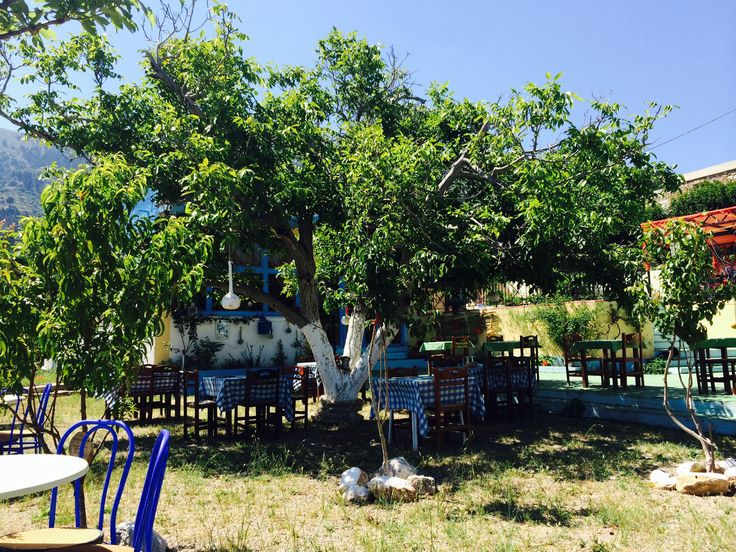 Greek taverna, Zia, Kos. The owners were so friendly even though neither of us spoke the others language, they made us feel so welcome. Beautiful place, wonderful people.
