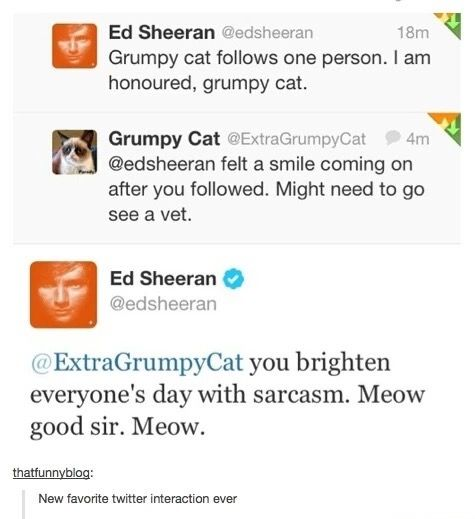 "MY SENIOR QUOTE WILL BE ""MEOW GOOD SIR. MEOW."" -Ed Sheeran"