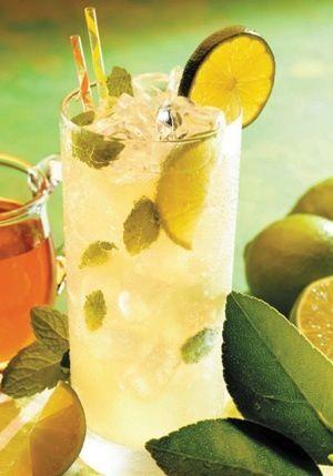 Iced Rooibos Mint Tea Recipe