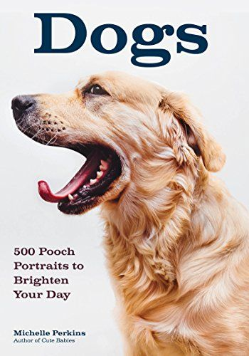 Available 2018! Dogs: 500 Pooch Portraits to Brighten Your Day