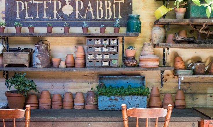 Discover. Explore. Adelaide. CBD. Peter Rabbit. InDaily.