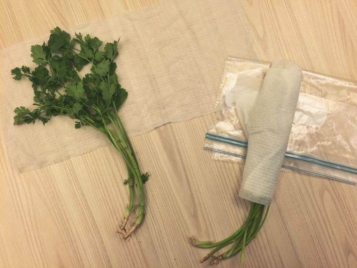 Keep herbs fresher for longer by storing them in a damp paper towel in a resealable bag.