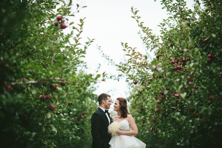 An orchard wedding at Verger Belliveau Orchard, not far from Moncton, New Brunswick.