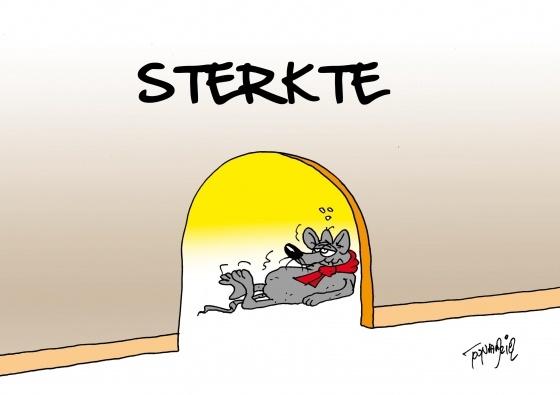 Sterkte (© Toon van Driel)