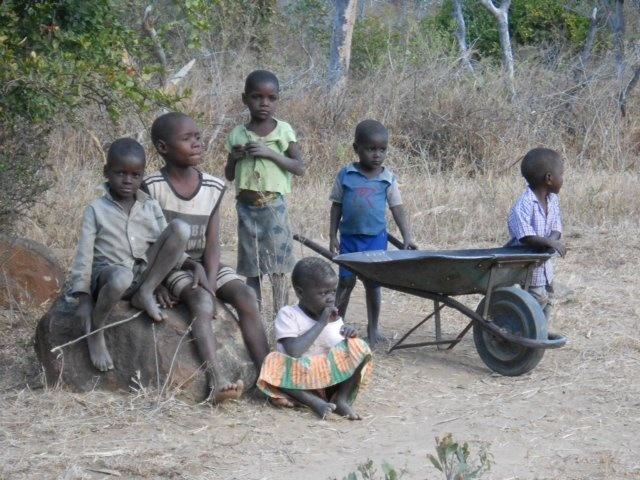 17 Best images about Zimbabwe on Pinterest | Boys, Orphan ...