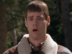 7 best Lloyd Christmas images on Pinterest | Jim carrey, Dumb and ...