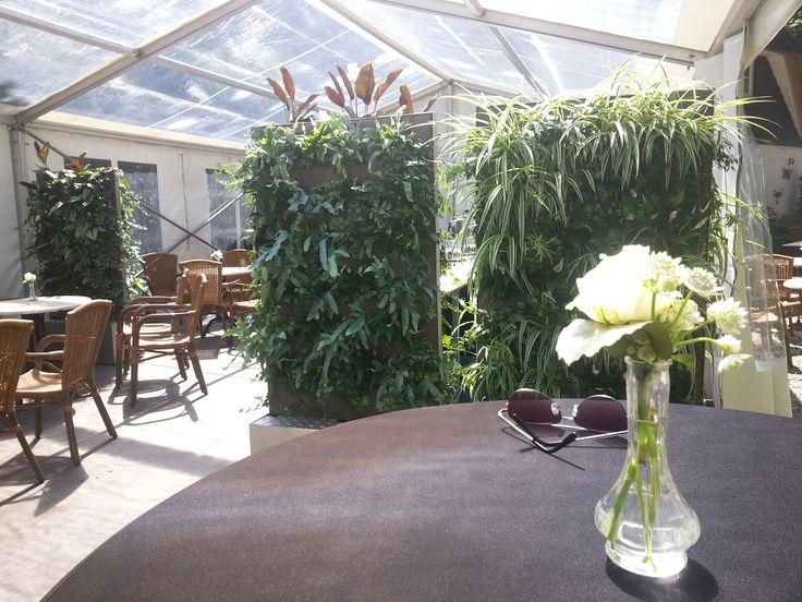 Vertiplant Mobile een verrijdbaar plantenscherm