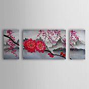 Óleo pintada a mano del flor de cereza floral... – EUR € 90.74