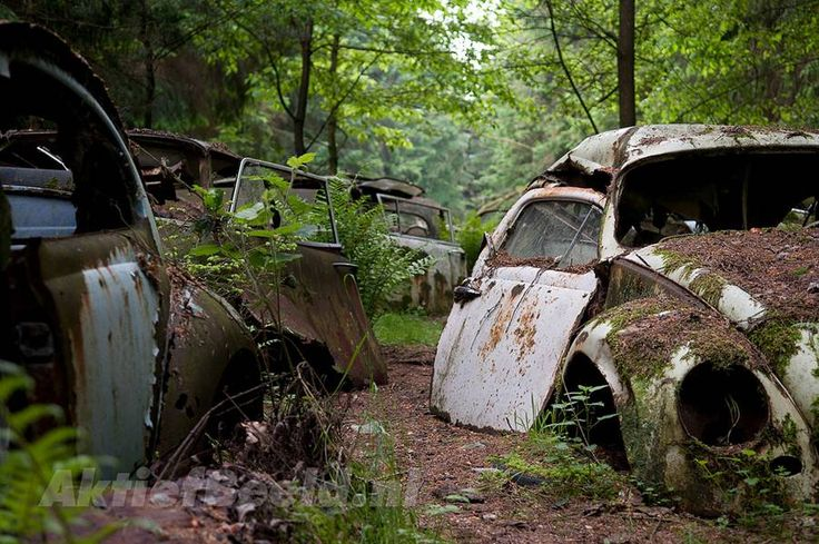 Abandoned car cemetery in Chatillon: door off hinges