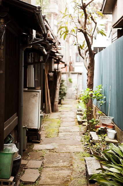 Shimokitazawa green alley : Setagaya, Tokyo, Japan / Japón by Lost in Japan, by Miguel Michán on Flickr
