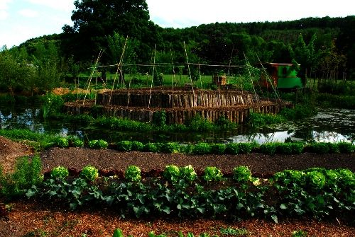 43 best images about permaculture ressources on pinterest bill mollison construction and plants - La permaculture c est quoi ...