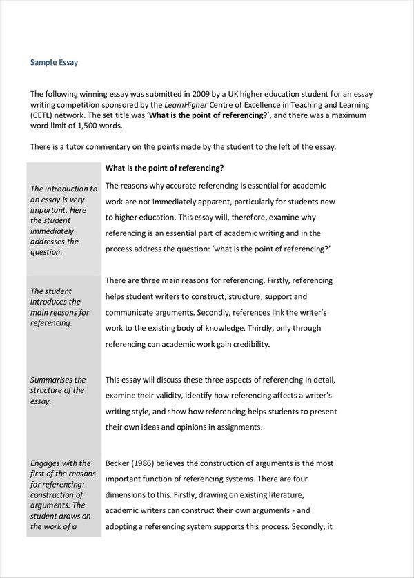 essay academic writing example