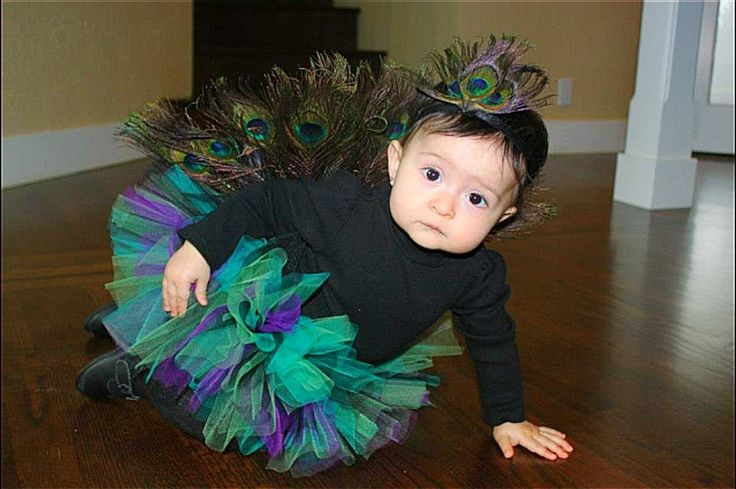 Baby peacock costume. Ellie's first Halloween. #babypeacock #babypeacockcostume #peacockcostume
