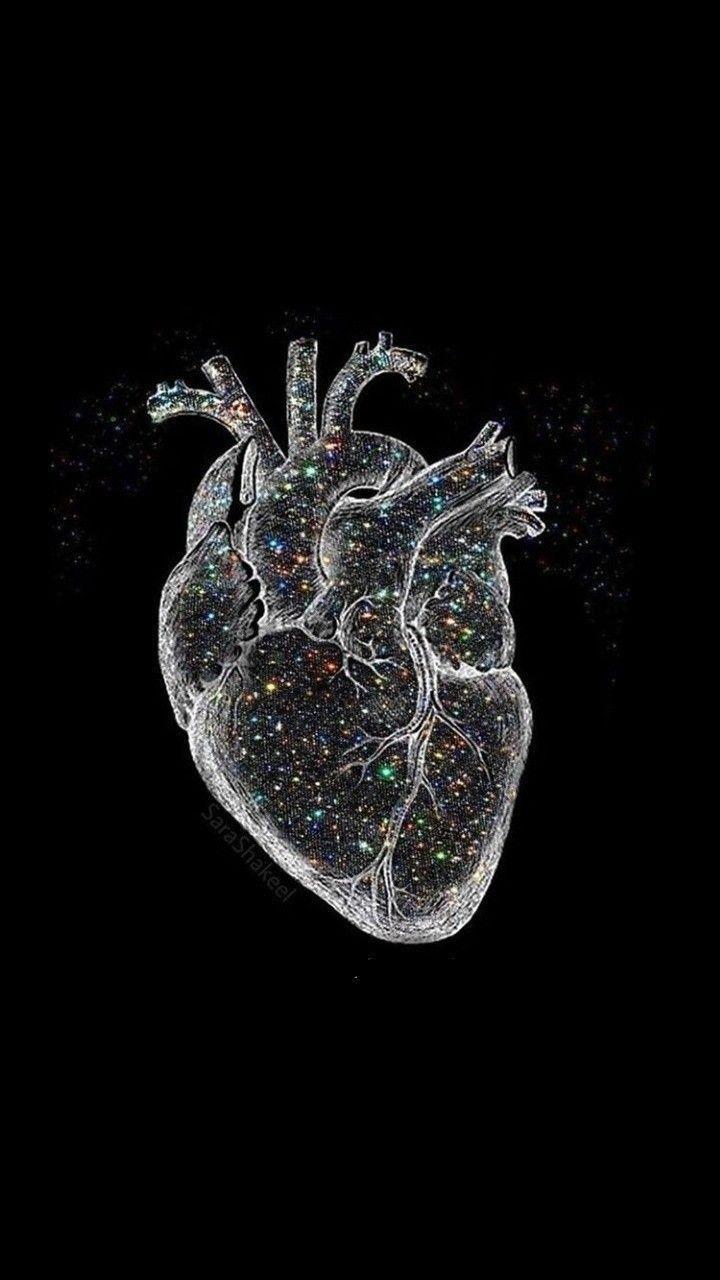 pin : kangaroomz   Iphone art, Anatomy art, Medical wallpaper