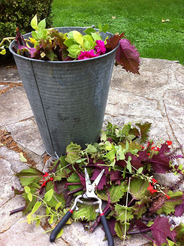 Simple composting ideas