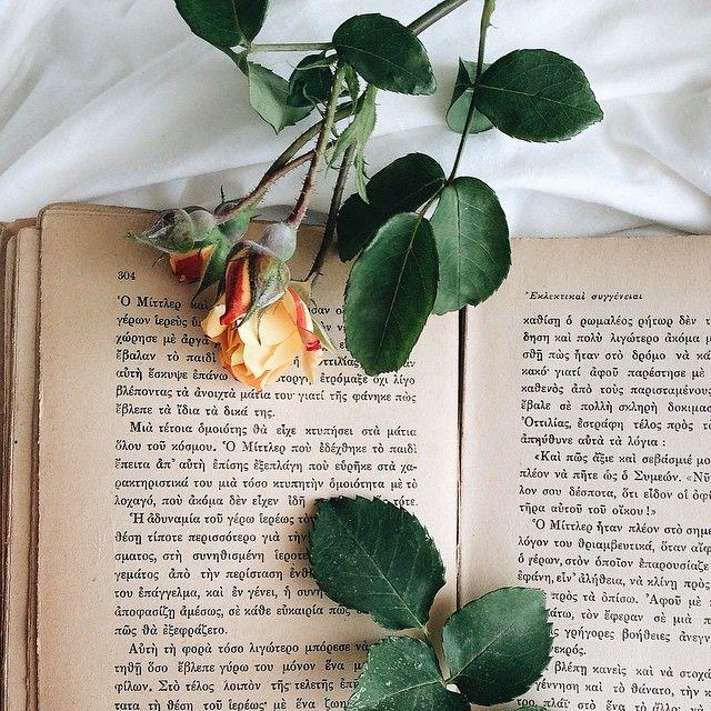 Много роз 🌹 πολλά τριαντάφυλλα ....🌹