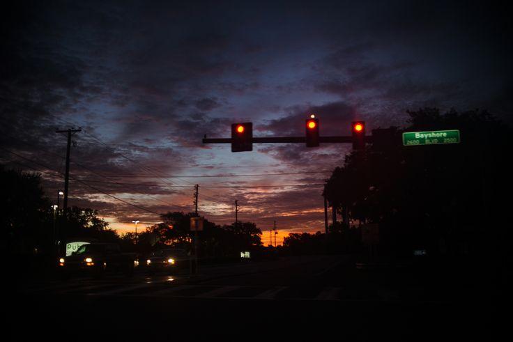 """""""Tampa"""" by Laura Zalenga"""
