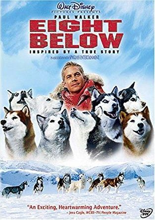 Eight Below (Full Screen Edition) (2006 / DVD) Paul Walker, Jason Biggs, Bruce Greenwood, Moon Bloodgood, Wendy Crewson