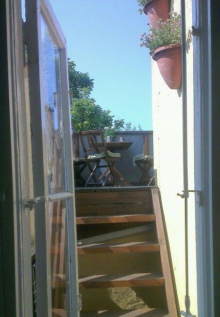 Kitchen window.