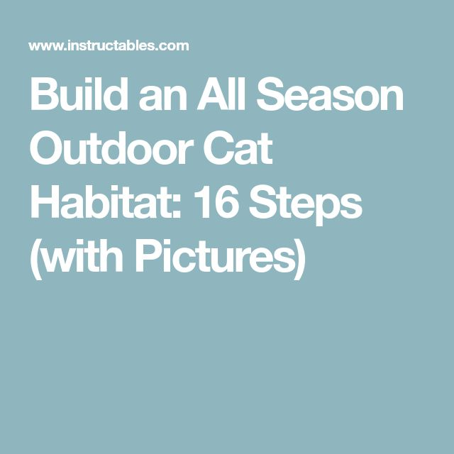 Build an All Season Outdoor Cat Habitat: 16 Steps (with Pictures)