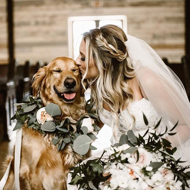When your puppy is just as happy as you are on your wedding day 🐶❤️ Photography by @chillenlikeagillen | Venue @bigskybarn | Bride @krystalschultze | #puppy #pupper #doggo #dogsofinstagram #flowers #blep #smile #happy #wedding #weddingday #weddingchicks #love #puppylove