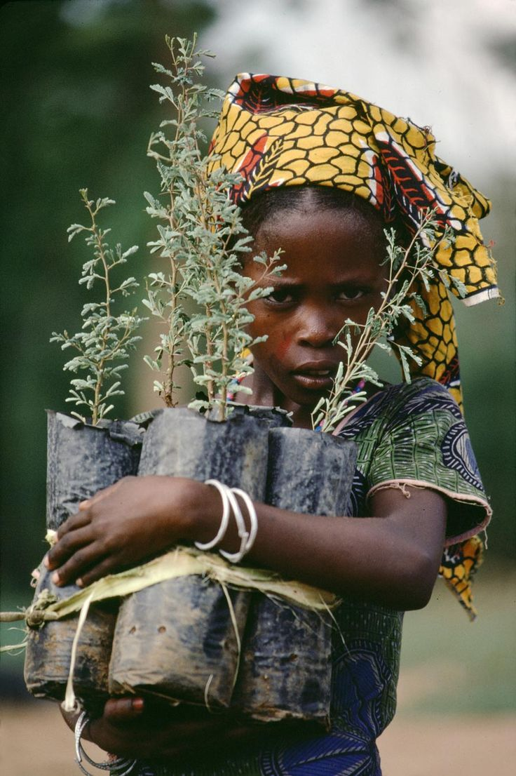 Start treating the EARTH as your own child! photo by Steve McCurry