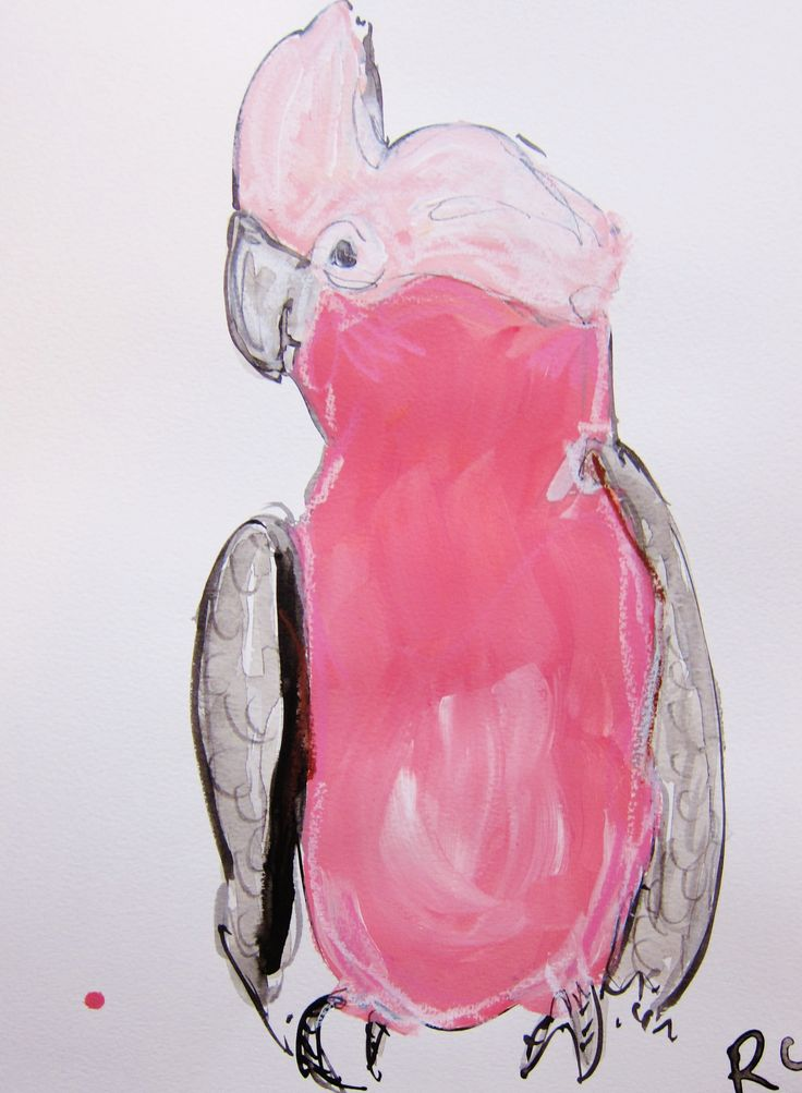 Galah Henrietta Original artwork Mixed media on paper $185 Buy now also on Blue thumb