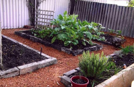 deocrate patio plants | Decorating Open Spaces in Your Home with Greenery