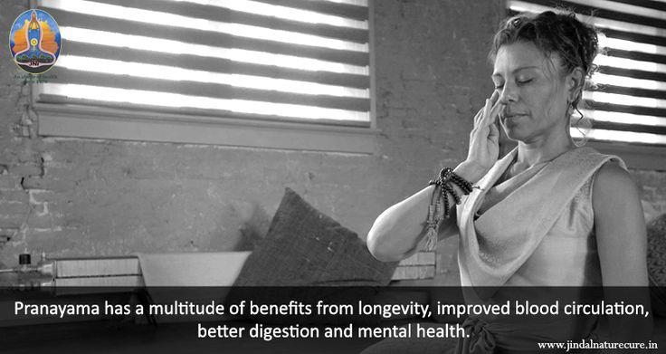 Pranayama has a multitude of benefits from longevity, improved blood…