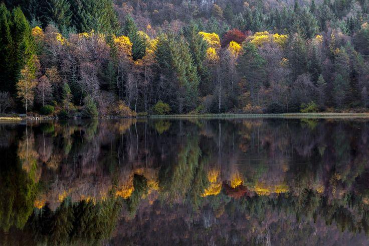 Autumn colors - null