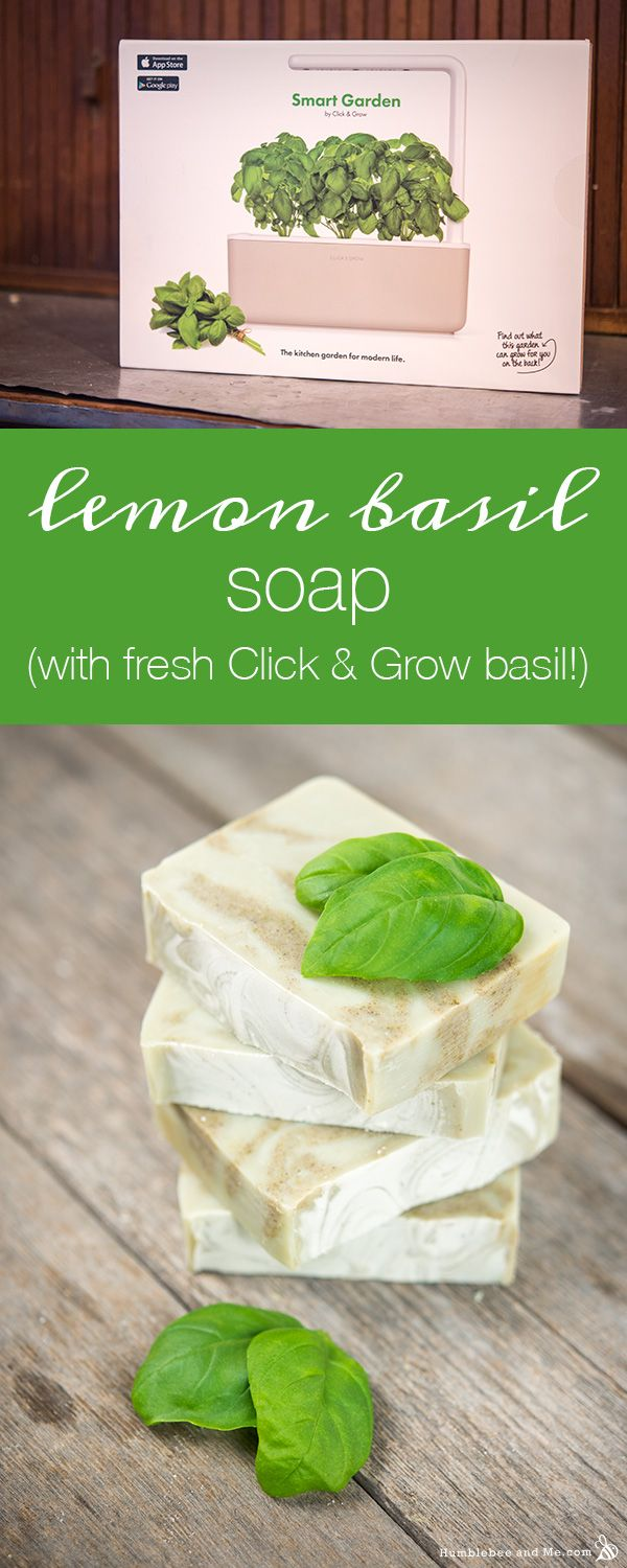 Lemon Basil Soap (with fresh Click