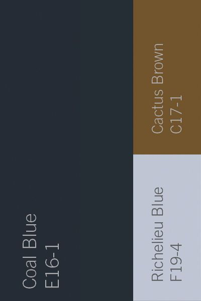 The deep velvety hue of Dutch Boy's January Color of the Month, Coal Blue, can be balanced with Richelieu Blue and Cactus Brown to create a space as unique as you.